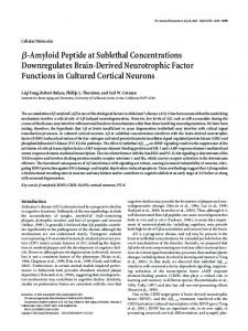 -Amyloid Peptide at Sublethal Concentrations Downregulates Brain ...