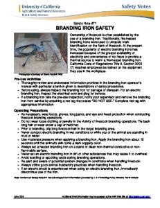 071 Branding Iron Safety