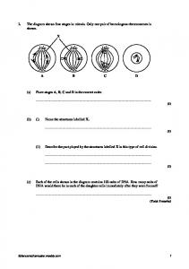 Stages of mitosis mafiadoc the diagram shows four stages in mitosis only one pair of ccuart Images