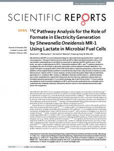 13C Pathway Analysis for the Role of Formate in ... - VTechWorks