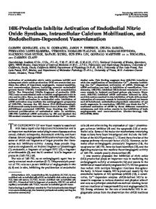 16K-Prolactin Inhibits Activation of Endothelial Nitric Oxide Synthase ...