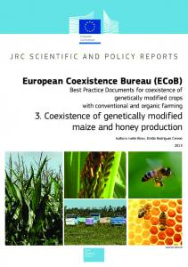 3. Coexistence of genetically modified maize and honey production