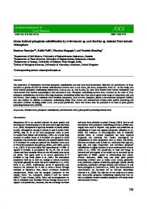 378 Stress induced phosphate solubilization by ... - CiteSeerX