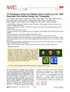 3D visualization of iron oxidation state in FeO/Fe3O4 core-shell ...