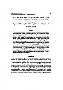65 efficiency of fast- and slow-twitch muscles of the ... - Semantic Scholar