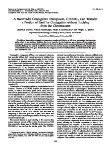 A Bacteroides Conjugative Transposon, CTnERL, Can Transfer a ...