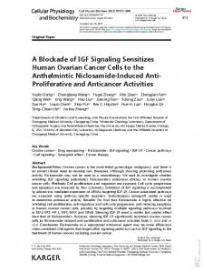 A Blockade of IGF Signaling Sensitizes Human