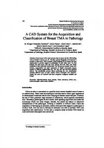 A CAD System for the Acquisition and Classification of ...
