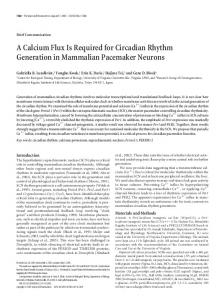A Calcium Flux Is Required for Circadian Rhythm Generation in ...