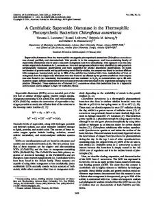A Cambialistic Superoxide Dismutase in the Thermophilic ...