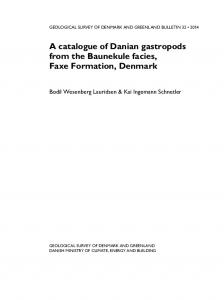 A catalogue of Danian gastropods from the Baunekule facies ... - GEUS