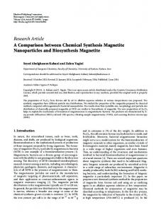 A Comparison between Chemical Synthesis Magnetite Nanoparticles