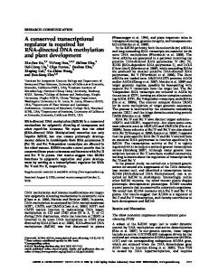 A conserved transcriptional regulator is required for RNA-directed ...