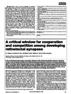 A critical window for cooperation and competition among developing ...