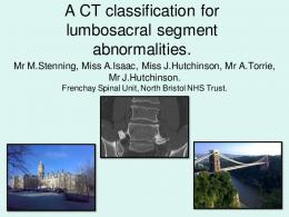 A CT classification for lumbosacral segment abnormalities.