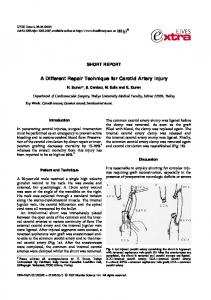 A Different Repair Technique for Carotid Artery Injury