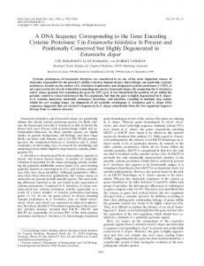 A DNA Sequence Corresponding to the Gene Encoding Cysteine ...