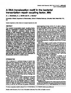A DNA translocation motif in the bacterial transcription±repair coupling ...