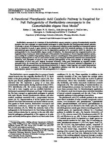 A Functional Phenylacetic Acid Catabolic Pathway Is Required for Full ...