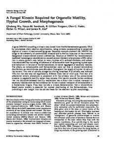 A Fungal Kinesin Required for Organelle Motility, Hyphal Growth, and ...
