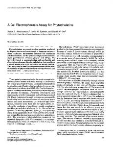 A Gel Electrophoresis Assay for Phytochelatins - ScienceDirect