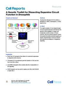 A Genetic Toolkit for Dissecting Dopamine Circuit