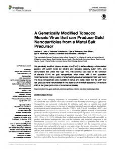 A Genetically Modified Tobacco Mosaic Virus that can Produce Gold ...