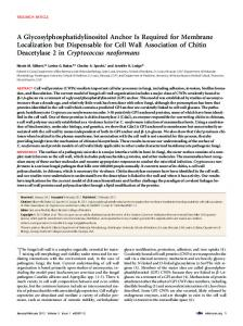 A Glycosylphosphatidylinositol Anchor Is Required for ... - ScienceOpen