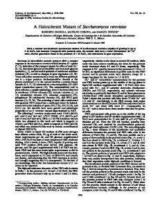 A Halotolerant Mutant of Saccharomyces cerevisiae - Journal of ...