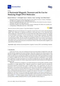A Horizontal Magnetic Tweezers and Its Use for Studying ... - MDPI