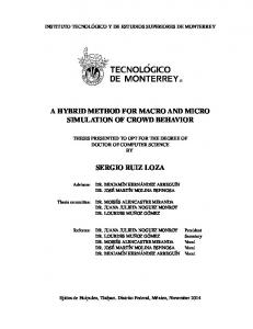 A Hybrid Method for Macro and Micro Simulation of ...