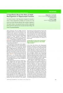 A Hypothesis About the Role of Adult Neurogenesis in Hippocampal ...