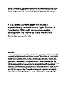 A large archosauriform tooth with multiple supernumerary ... - UNCG.edu