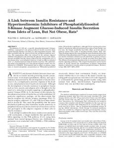 A Link between Insulin Resistance and Hyperinsulinemia: Inhibitors of ...