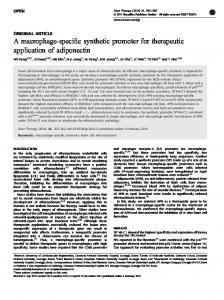 A macrophage-specific synthetic promoter for ... - BioMedSearch