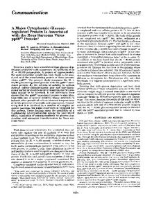 A major cytoplasmic glucose-regulated protein is associated with the ...