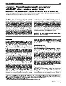 A mammalian Rho-specific guanine-nucleotide exchange factor (p164 ...