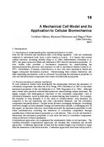 A Mechanical Cell Model and Its Application to Cellular ... - IntechOpen