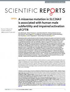 A missense mutation in SLC26A3 is associated with human male