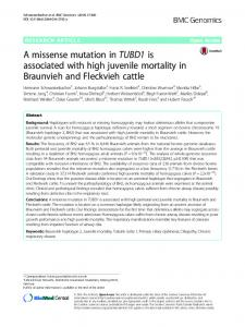 A missense mutation in TUBD1 is associated with high juvenile ...