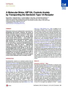 A Molecular Motor, KIF13A, Controls Anxiety by ... - Cell Press