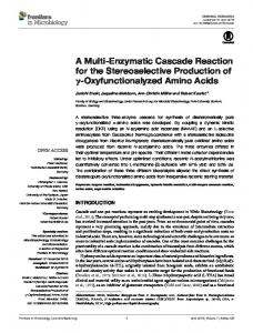 A Multi-Enzymatic Cascade Reaction for the Stereoselective ... - Core