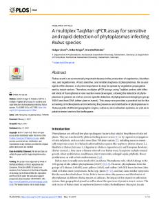 A multiplex TaqMan qPCR assay for sensitive and rapid ... - PLOS