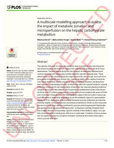 A multiscale modelling approach to assess the