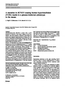 A mutation in KCNJ11 causing human hyperinsulinism - Springer Link