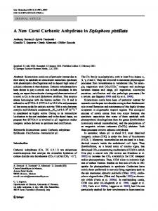 A New Coral Carbonic Anhydrase in Stylophora pistillata - Springer Link