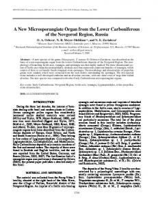 A New Microsporangiate Organ from the Lower Carboniferous of the ...