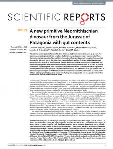 A new primitive Neornithischian dinosaur from the ...