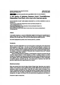 A new species of Agistemus Summers (Acari ... - BioOne