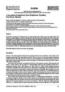 A new species of masked-owl (Aves: Strigiformes: Tytonidae) from ...